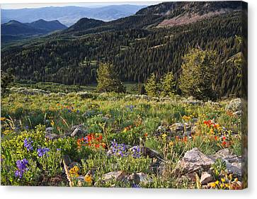 Wasatch Mountains Of Utah Canvas Print by Utah Images