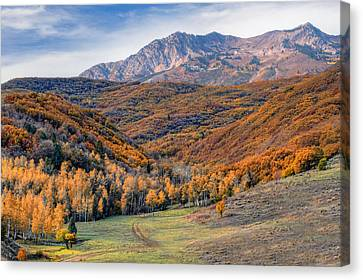 Wasatch Moutains Utah Canvas Print by Utah Images