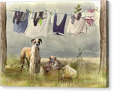 Wash Day Canvas Print by Trudi Simmonds