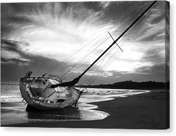 Washed Up Canvas Print by Ben Hutchings