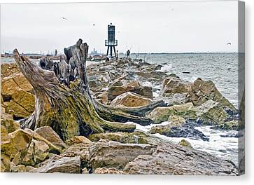 Washed Up Canvas Print by John Collins
