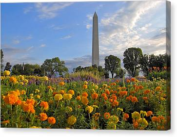 Canvas Print featuring the photograph Washimgtom Monument In Spring by Michael Donahue