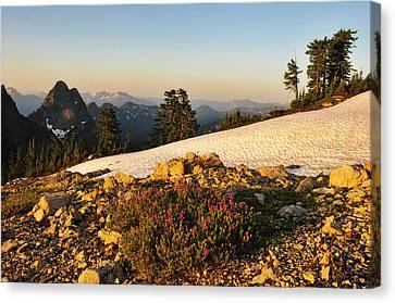 Washington, Cascade Mountains, Mount Canvas Print by Matt Freedman