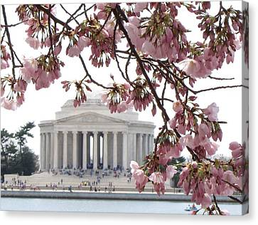 Canvas Print featuring the photograph Washington Dc In Bloom by Jennifer Wheatley Wolf