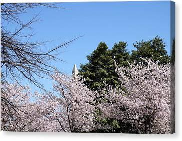 Washington Monument - Cherry Blossoms - Washington Dc - 01133 Canvas Print by DC Photographer