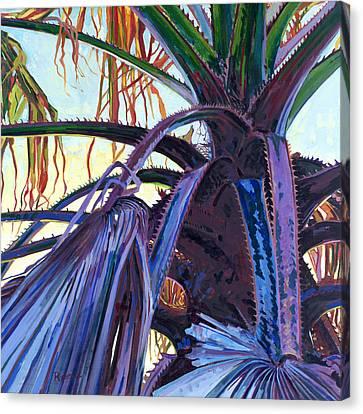 Washingtonia Canvas Print by David Randall