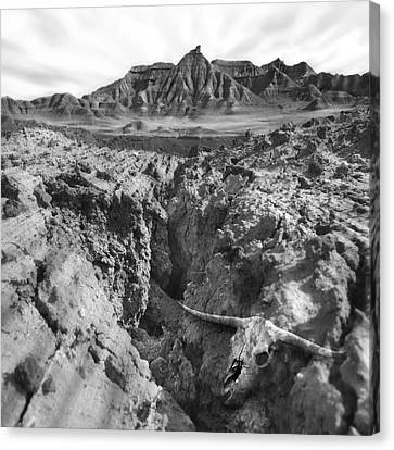 Wasteland Canvas Print by Mike McGlothlen