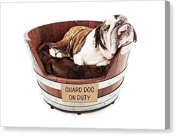 Watch Dog Sleeping On Job Canvas Print by Susan Schmitz