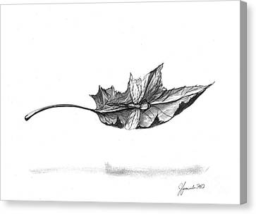 Watch Me Soar Canvas Print by J Ferwerda