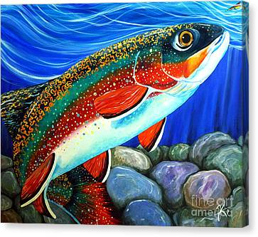 Brook Trout  Canvas Print by Jackie Carpenter