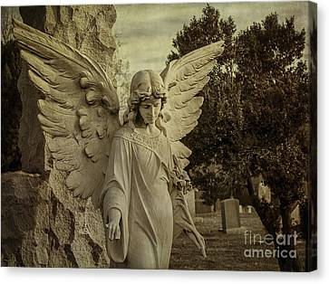 Watch Over Me Canvas Print by Terry Rowe