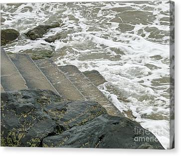 Canvas Print featuring the photograph Watch Your Step by Brenda Brown