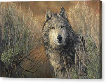 Timber Canvas Print - Watchful by Lucie Bilodeau