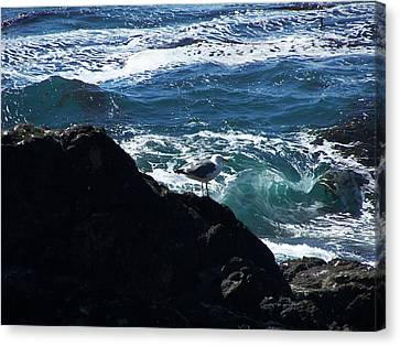 Watching As The Waves Pass By Canvas Print