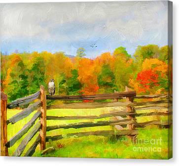 Watching Autumn Canvas Print by Darren Fisher
