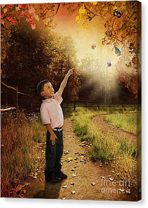 Pathway Canvas Print - Watching Butterflies by Peter Awax