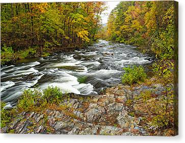 Watching It All Go By  At Beaver's Bend Broken Bow Fall  Foliage Oklahoma Canvas Print by Silvio Ligutti