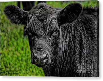 Watching Me Canvas Print