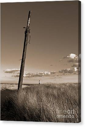 Watching Over The Sea King Canvas Print by Mark Miller