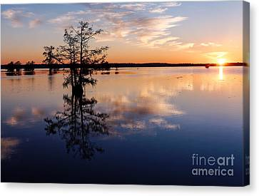 Watching The Sunset At Ba Steinhagen Lake Martin Dies Jr. State Park - Jasper East Texas Canvas Print by Silvio Ligutti