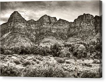 Canvas Print featuring the photograph Watchman Trail In Sepia - Zion by Tammy Wetzel
