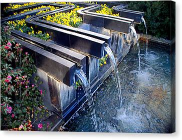 Water And Flowers At Ft Worth Botanic Gardens Canvas Print
