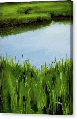 Water And Grass Swirl Canvas Print