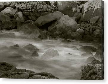 Water And Rocks Canvas Print by Amarildo Correa