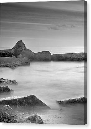 Water Barriers Canvas Print