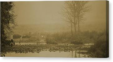 Water Buffalo And Egret Canvas Print by Frank Feliciano