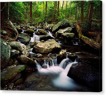 Water Cascading Over Rocks, Leconte Canvas Print by Panoramic Images