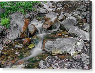 Water Coloured Rocks Canvas Print by Jonah  Anderson