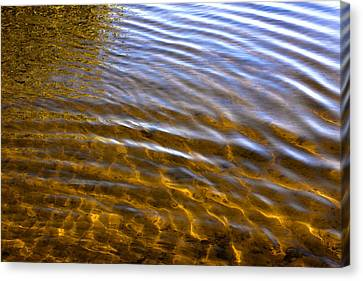 Water Concerto 5 Canvas Print