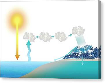 Water Cycle Canvas Print by Mikkel Juul Jensen