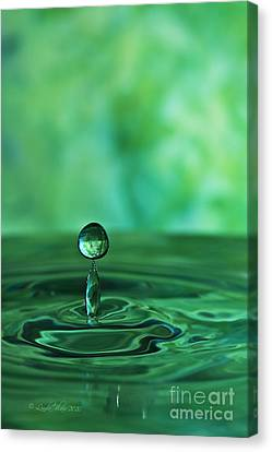 Water Drop Green Canvas Print