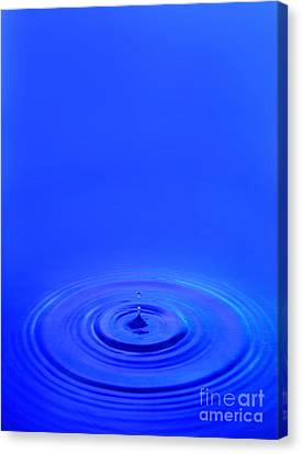 Drop Canvas Print - Water Drop by Jon Neidert