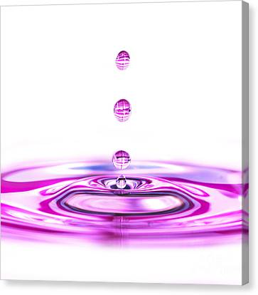 Water Droplets White And Purple Canvas Print