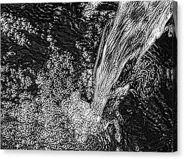 Canvas Print featuring the digital art 'water Fall' by Robert Rhoads