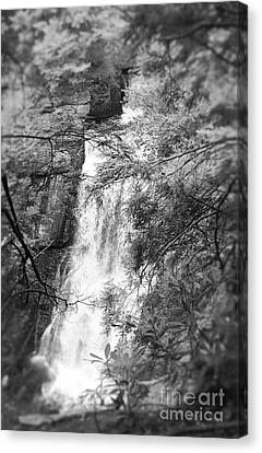 Canvas Print featuring the photograph Water Falls by Paul Cammarata