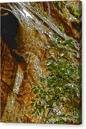 Water From Rock-dp Canvas Print by Nancy Marie Ricketts