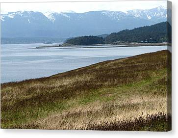Hornby Island Canvas Print - Water Landscape by Annie  DeMilo