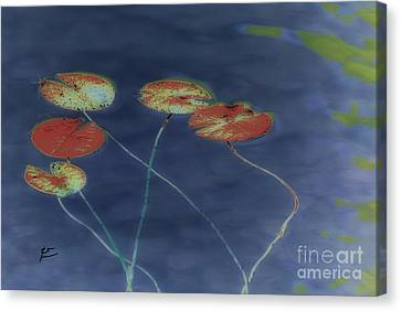 Water Lilies 2 Canvas Print by Leo Symon