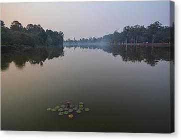 Water Lilies At Dawn Canvas Print