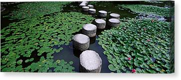 Water Lilies In A Pond, Helan Shrine Canvas Print by Panoramic Images