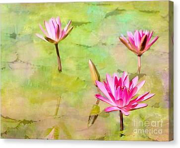 Water Lilies Inspired By Monet Canvas Print by Sabrina L Ryan