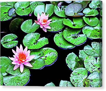 Water Lillies -- Inspired By Monet-1 Canvas Print