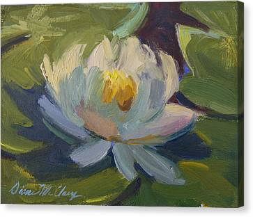 Water Lily 2 Canvas Print by Diane McClary
