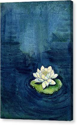 Water Lily Canvas Print by Katherine Miller