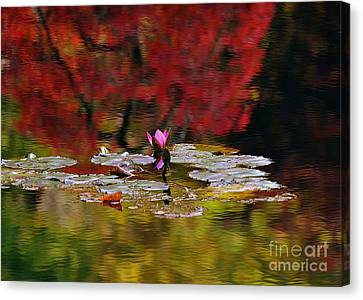 Canvas Print featuring the photograph Water Lily Reflection by Lisa L Silva