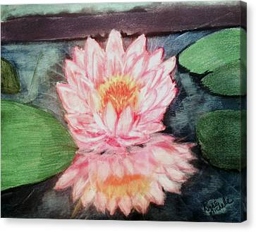 Water Lily Canvas Print by Renee Michelle Wenker